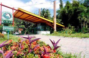ALT = i parchi e le riserve naturali di Manaus