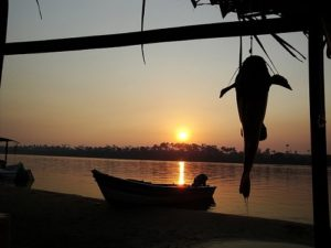 ALT = come pescare in Brasile