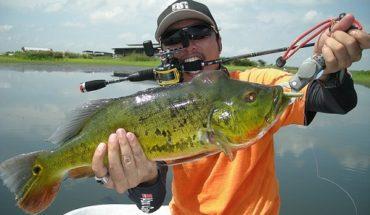 ALT = pescare in Brasile, tipologie dipesce in Brasile e come pescarle