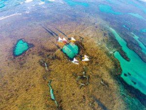 ALT = cosa fare a Porto de Galinhas, Brasile, snorkeling