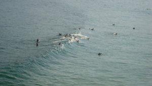 ALT = Praia do Arpoador, Rio de Janeiro, surf in Brasile