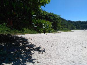 ALT = cosa visitare nei dintorni di Paraty, Trindade, Praia Cachadaço