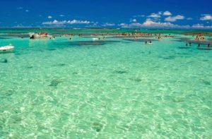 ALT = spiagge e piscine naturali a Maceio, Nord Est del Brasile