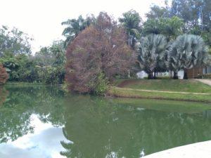 ALT = cosa vedere Brasile, il Parco di Inhotim, Belo Horizonte